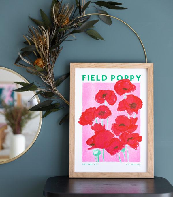 field poppy illustration
