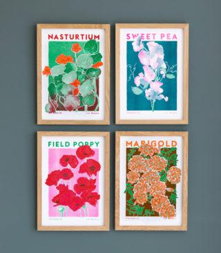 seed flower prints
