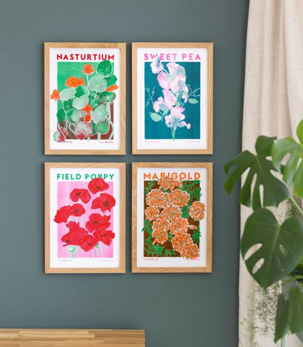 flower riso illustrations